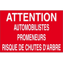 Attention automobilistes promeneurs risque chutes d'arbre