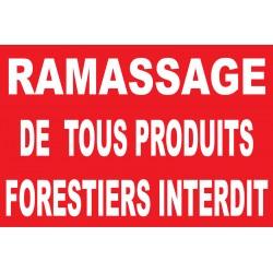 Panneau ramassage de produits forestiers interdit