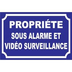 Panneau propriété sous alarme et vidéo surveillance